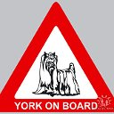York on board!
