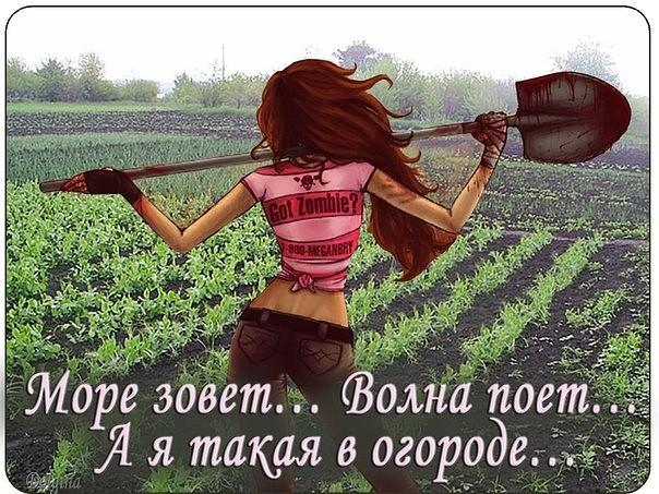 Смешные картинки про огород