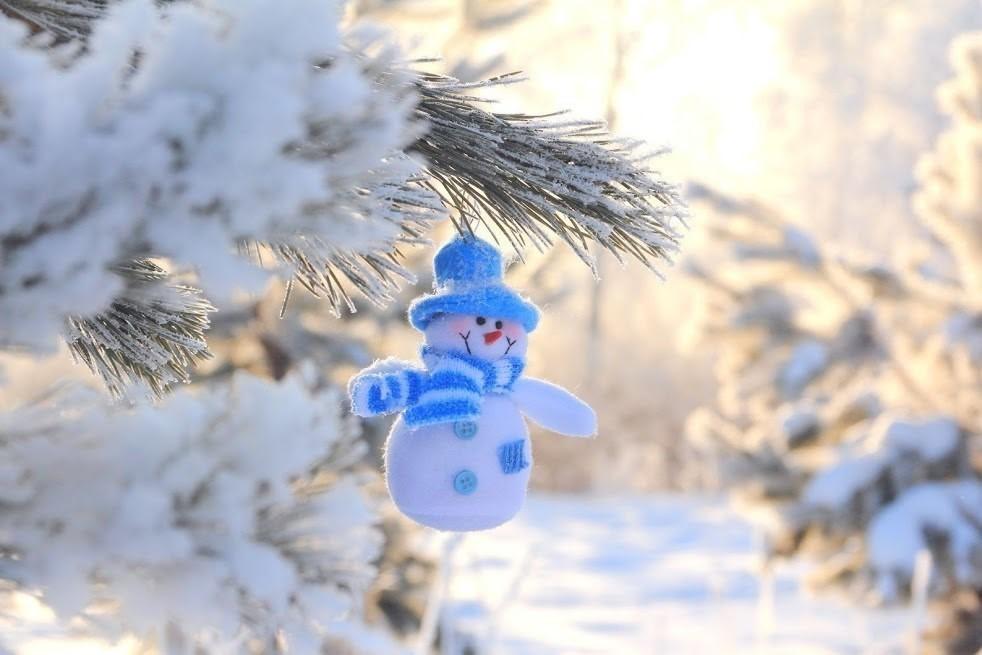 Отпуск, добрые картинки зима