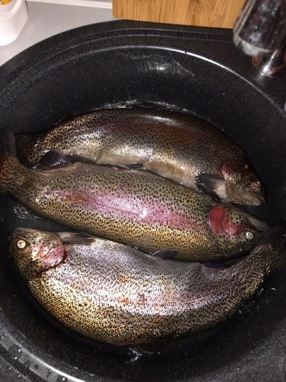 Рыбалка в красноярском края