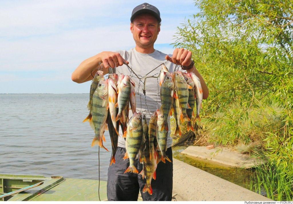 Рыбалка в Ростовской области: места и отзывы