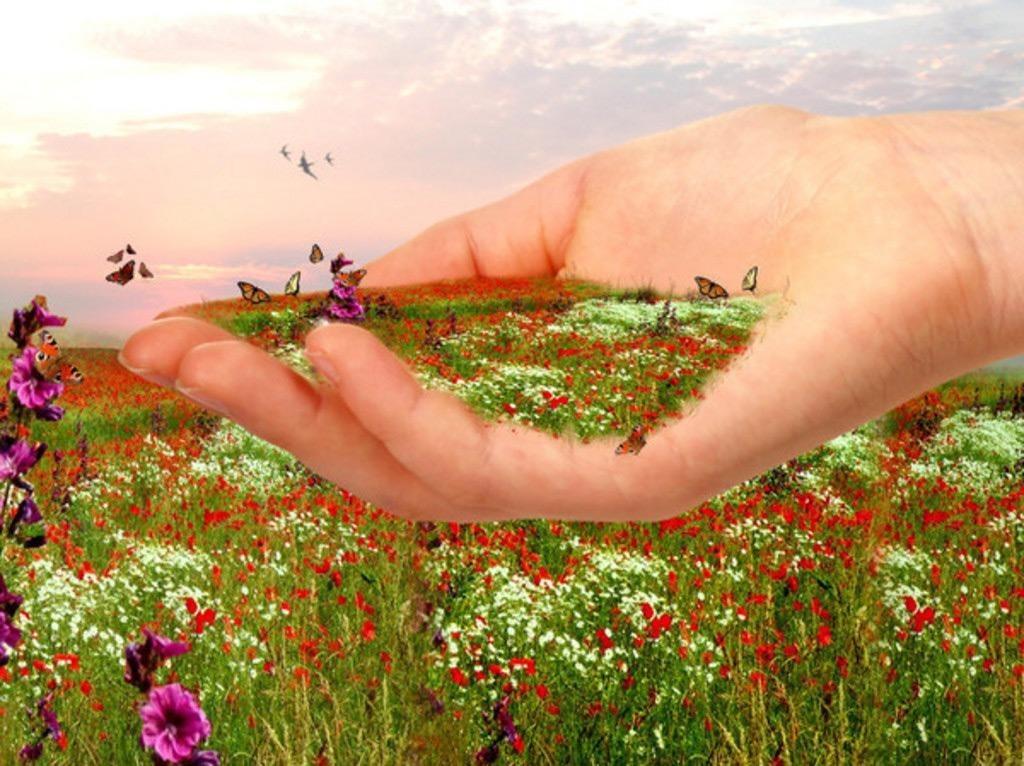 открытки о земном счастье мировом рынке