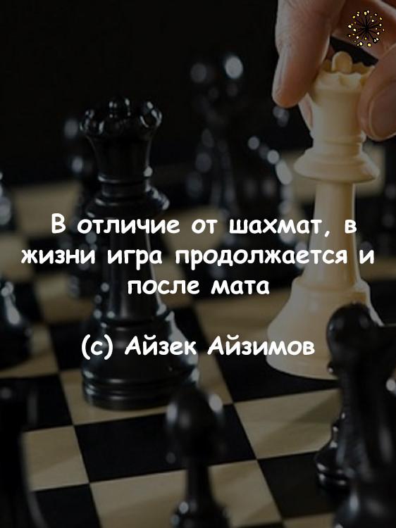 стихи шахматы жизнь вся промышленность