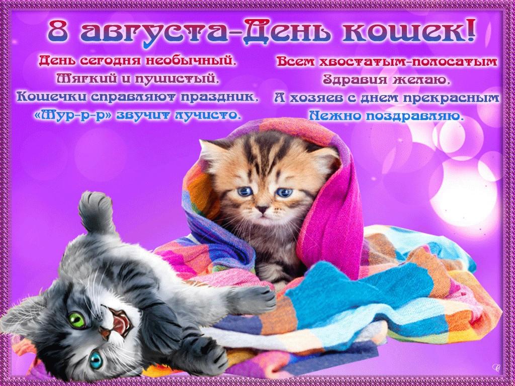Картинки поздравления всемирный день кошек, анимационные тебе всей