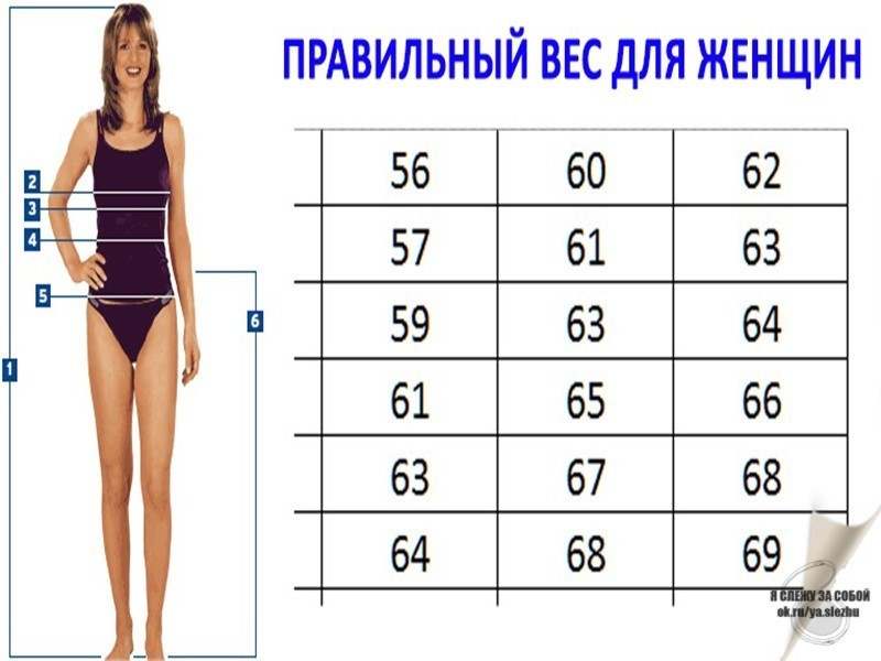 Рост 168 вес 65 работа майкоп для девушки