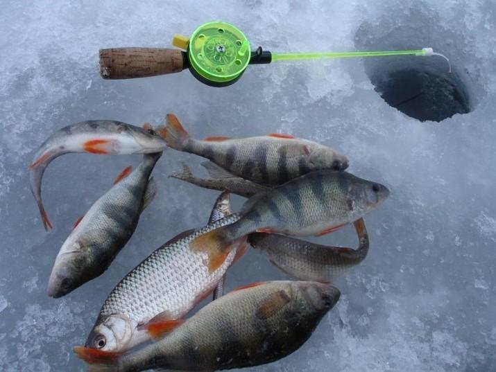 Рыбалка на юге в декабре