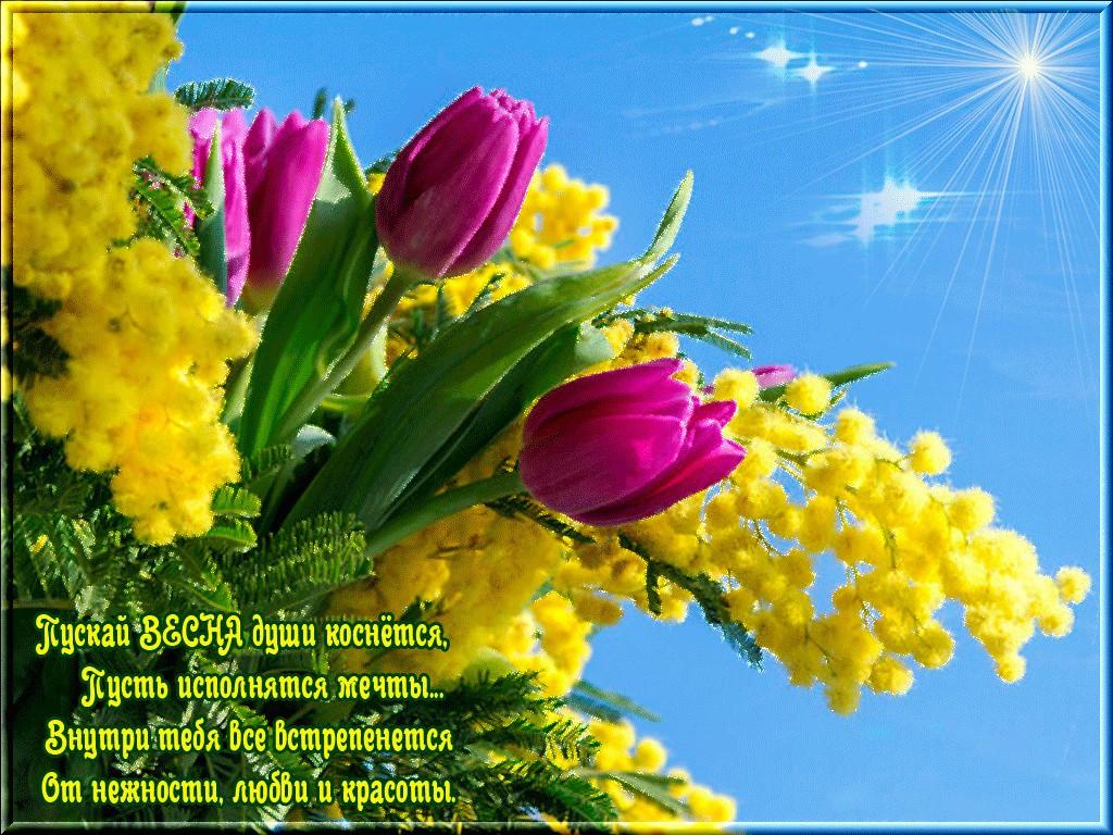 Весна цветы картинки стихи