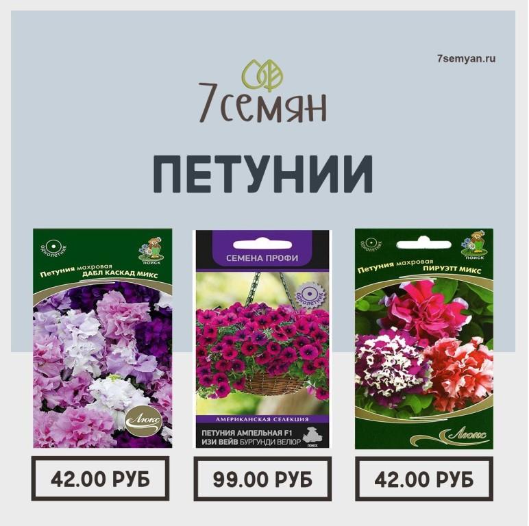 Магазин 7 Семян Каталог Цены