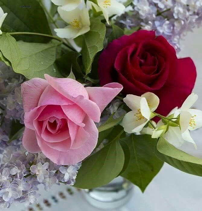 Открытки с прекрасной субботой с цветами и пожеланиями