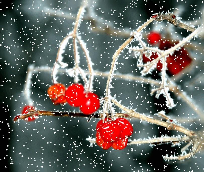 Картинки гифы падающий снег
