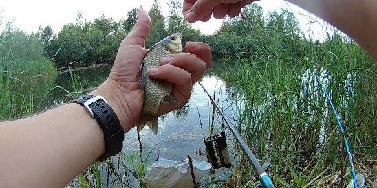 Рыбалка в Башкирии: где нельзя рыбачить и какую рыбу запрещено ловить
