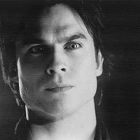deimon salvatore♥