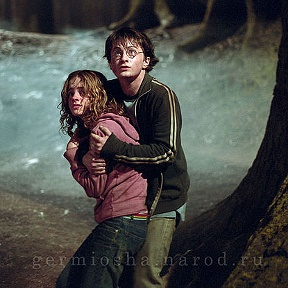 Harry Potter and Germiona Grenjer
