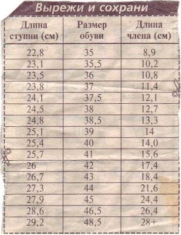 Размеры полововой органа фото фото 325-799