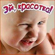 Сикис руский молодой силка фото 762-285