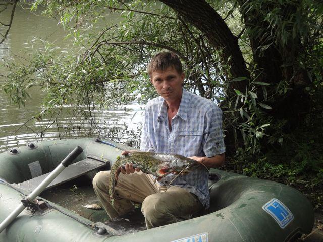 михаил, 53, Krymsk