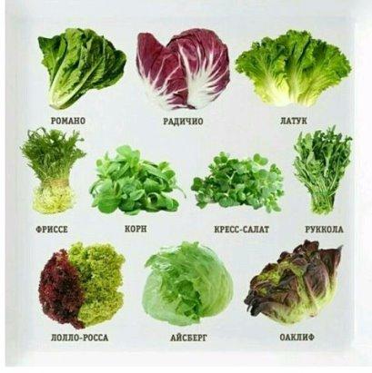 Что нужно кушать, чтобы похудеть? | пищевой блог. | яндекс дзен.