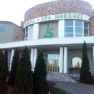 LS SPA Guba merkezi
