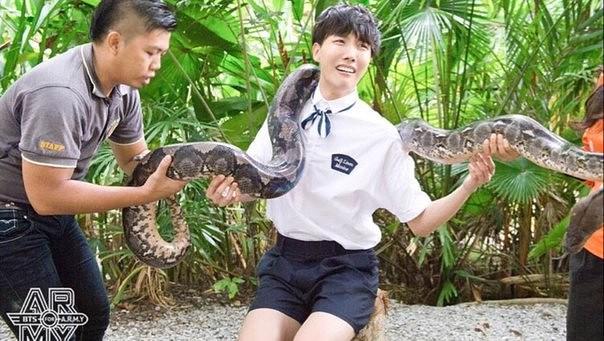 Картинки по запросу джей-хоуп и змея