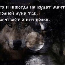 волк картинки с надписью