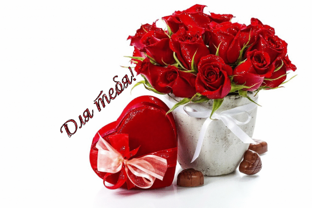 любимой цветы картинки