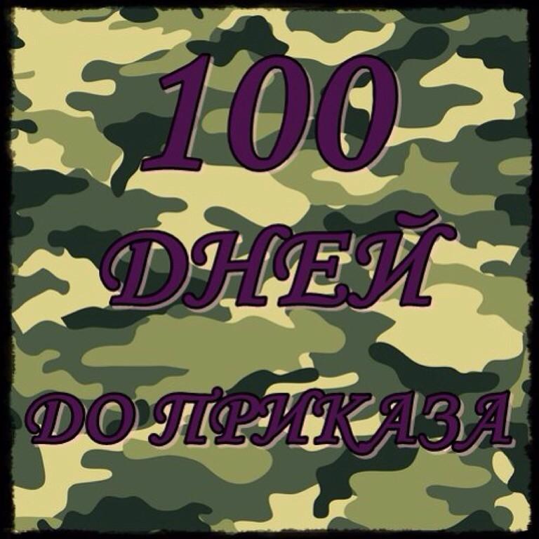 208 100 дней до приказа 12 10 1973 (александр суворый) / проза. Ру.