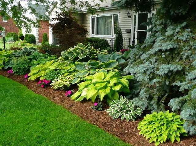 Landscaping Ideas Zone 9 :