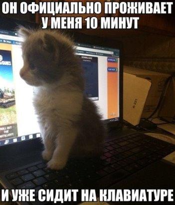 https://i.mycdn.me/image?id=836863098494&t=35&plc=WEB&tkn=*JL5fGRo1XQbX2vwK-Xv_h7v34MA