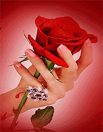 Картинка роза в руках с анимацией