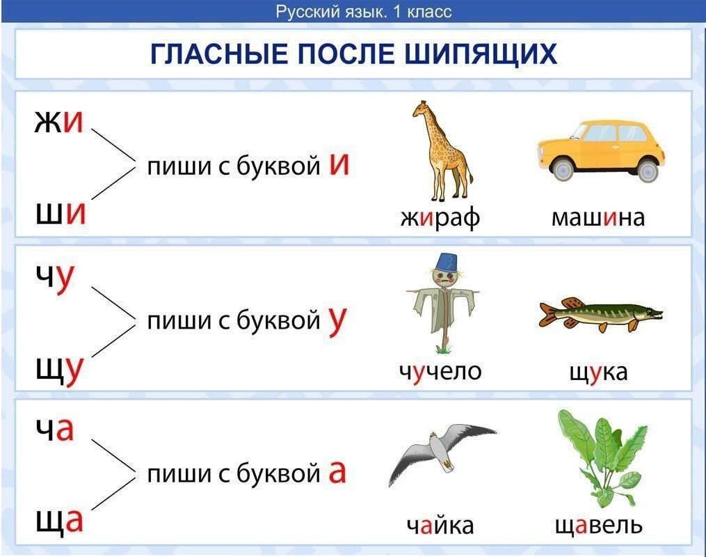 Картинки по русскому языку правила, для молодоженов