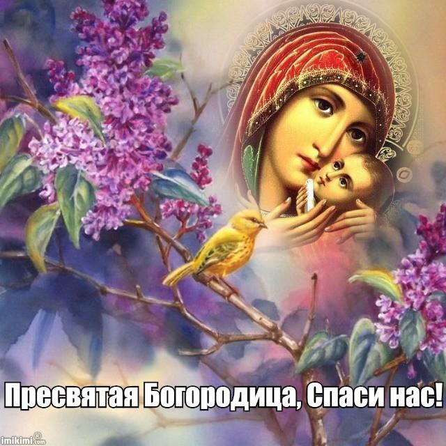 Открытки пресвятая богородица спаси нас, дай