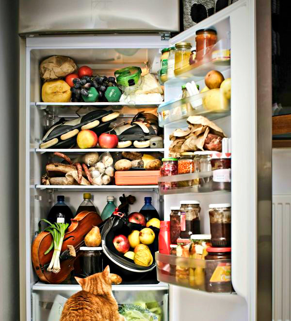 Картинки по запросу 8 способов экономии места в холодильнике