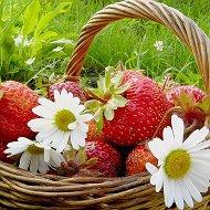 Клубника цветы
