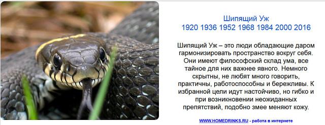 Мамба В Железногорске