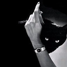 фото чёрно белые страсть