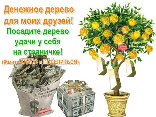 поздравления для подарка денежного дерев