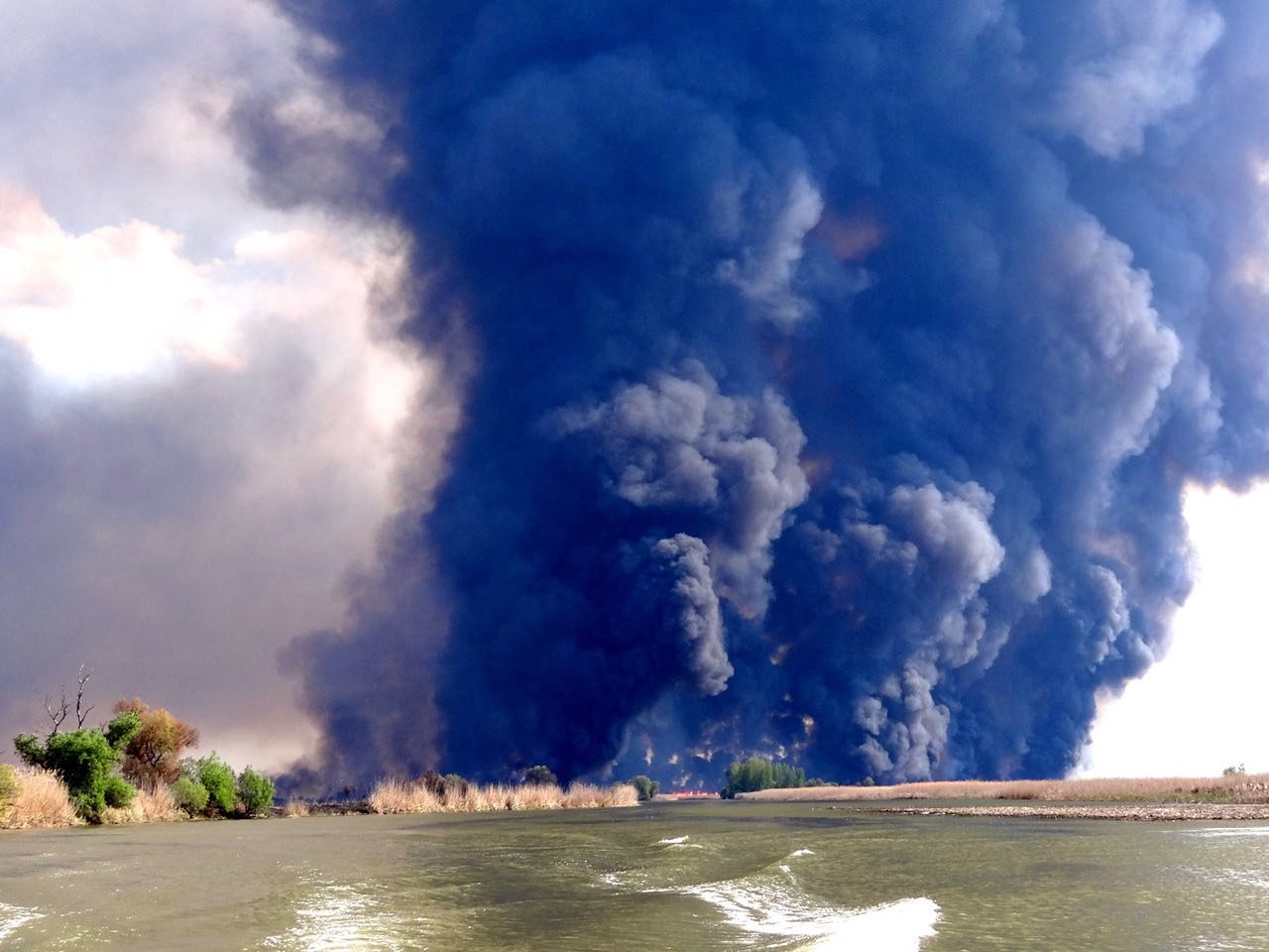 Экологическое бедствие картинка