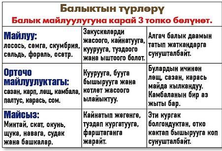 Безопасное питание kyrgyzstan maan platform.