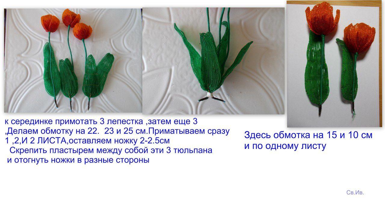 Весенние первоцветы Image?id=853283691871&t=3&plc=WEB&tkn=*fLhWopiEwVLehLViZZCz4bIufkg