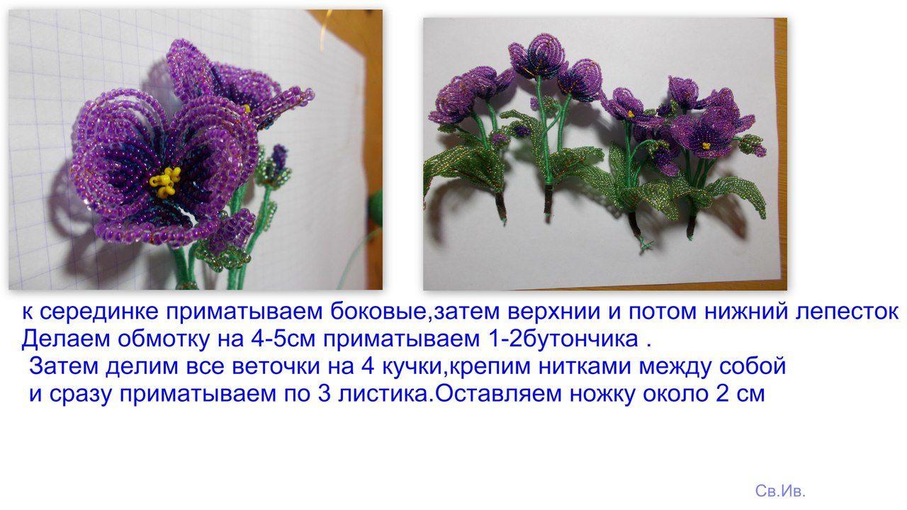 Весенние первоцветы Image?id=853283692383&t=3&plc=WEB&tkn=*Wj9CMxzow912Y9H5aArXGO3to68