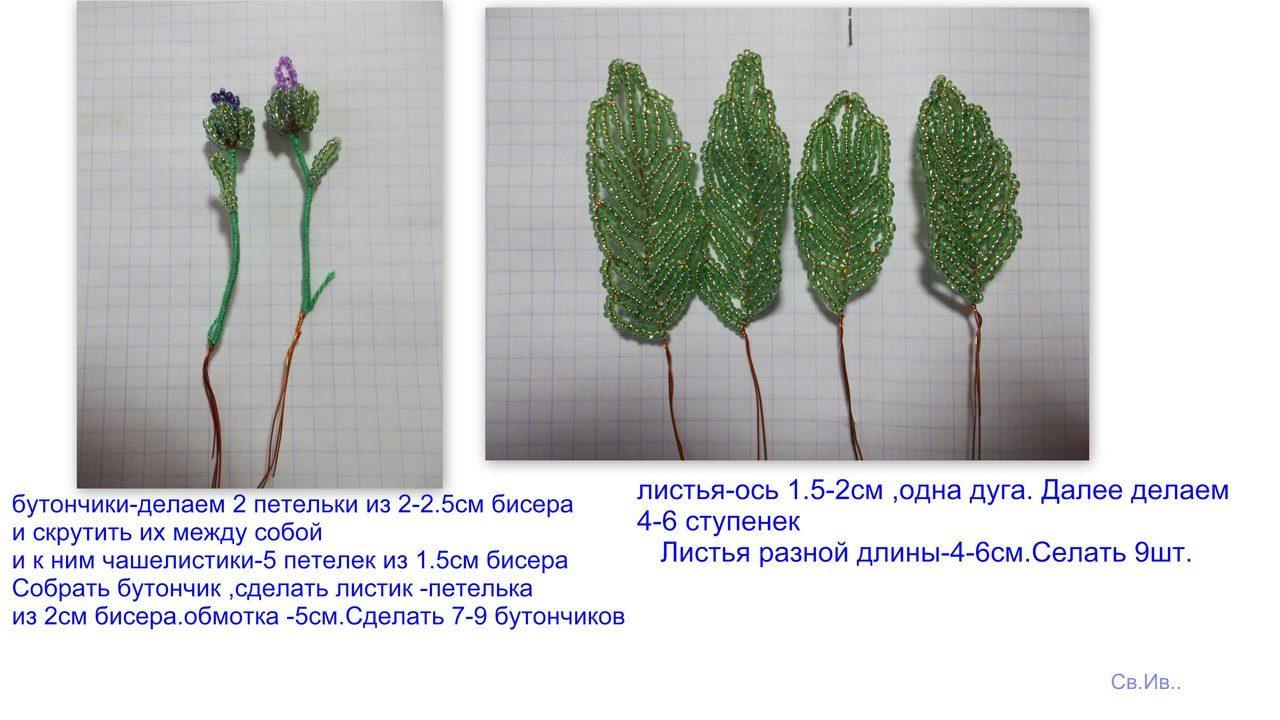 Весенние первоцветы Image?id=853283692639&t=3&plc=WEB&tkn=*Ou0Ke3k7mGObpU16fItkysjtdiw