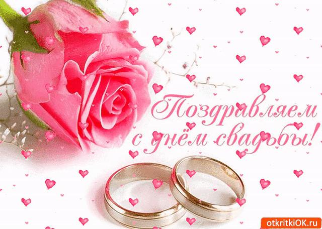 что поздравления на свадьбу для саши и лены ложкой достаем