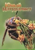Журнал о природе