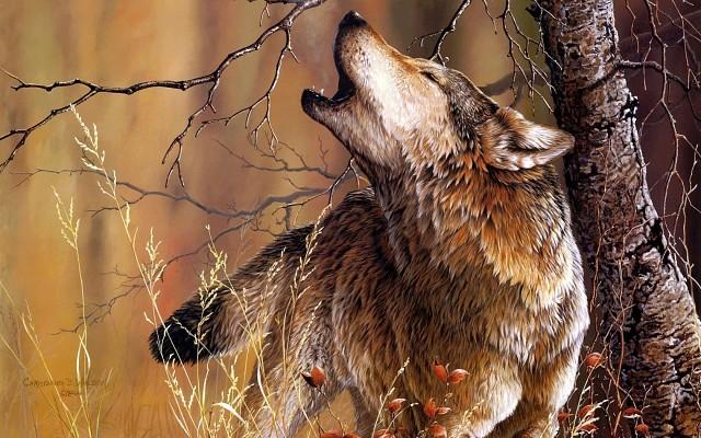 Картинки по запросу древность волки