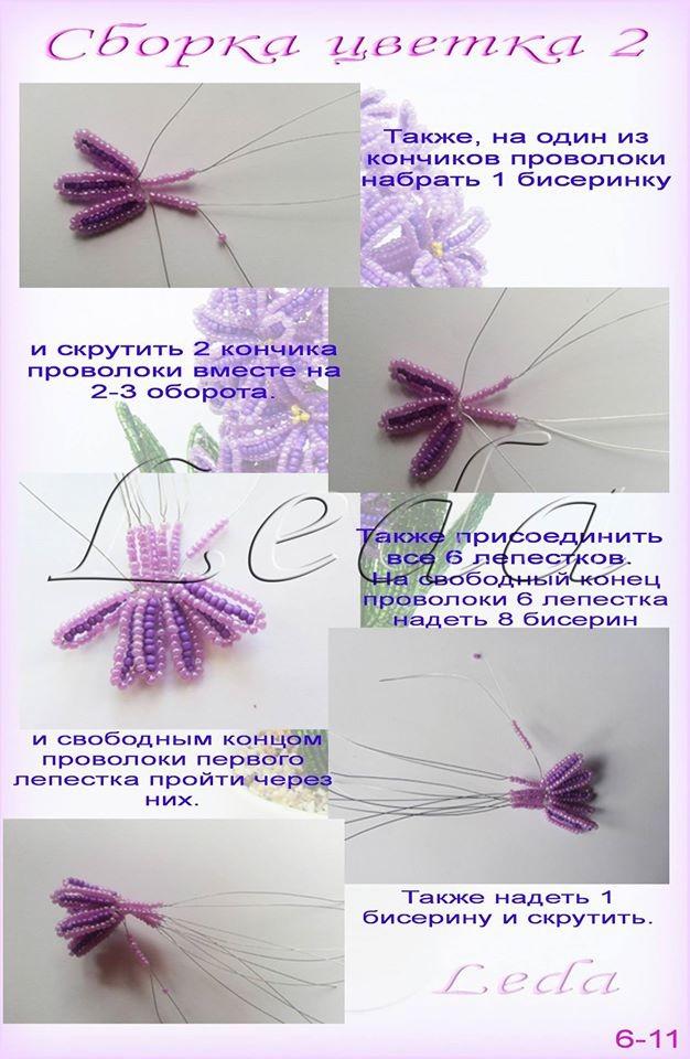 Весенние первоцветы Image?id=855303087852&t=3&plc=WEB&tkn=*481uTF4makfxuccV3yDmGkpkPvI