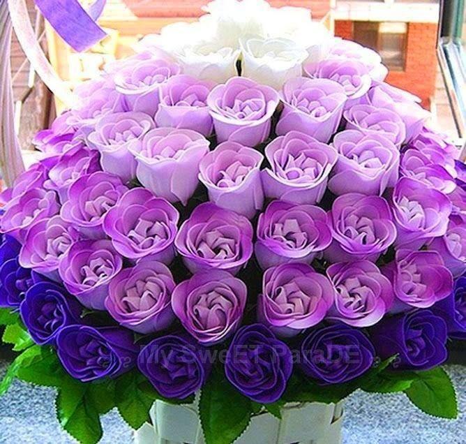 Цены, цветы для сестры картинки