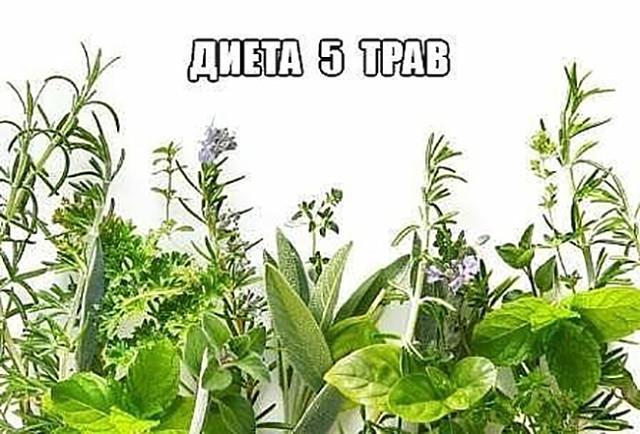Очень простая, но самая эффективная диета «5 трав»   хитрости жизни.