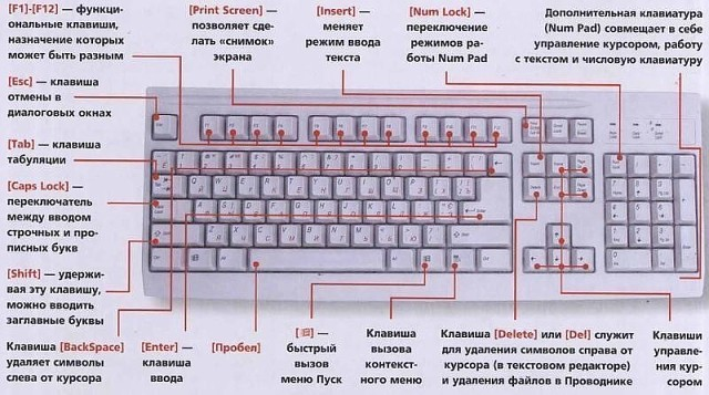 Знаете ли вы клавиатуру своего компьютера? Image?id=858853937932&t=0&plc=WEB&tkn=*CeU8JITu66IbDGWs0zXU1RFhWoE