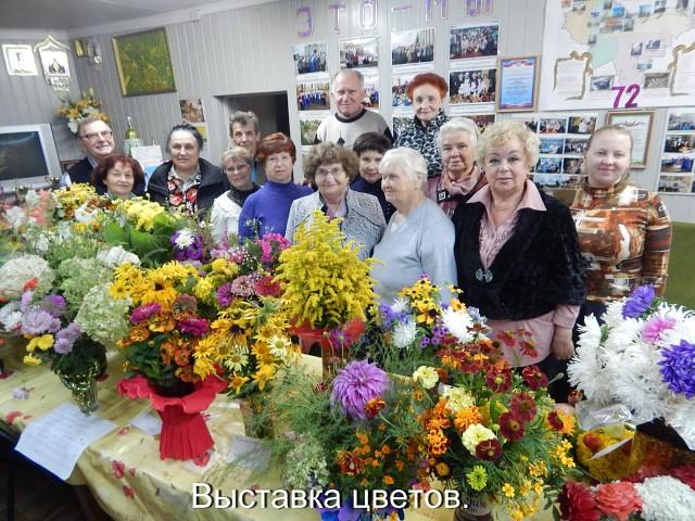 в Кулебакской ГО ВОИ прошла выставка цветов «Осенние краски», посвященная 30-летию ВОИ