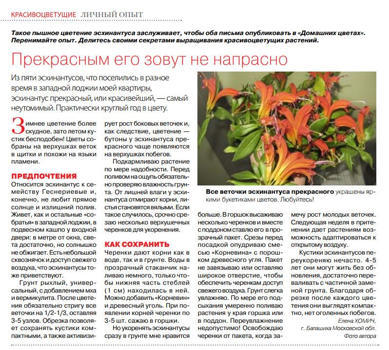 статьи о растениях из  газет и журналов - Страница 7 Image?id=860593253320&t=3&plc=WEB&tkn=*Kf2QoAnFxecF-7AQNAQNjz9rMFI